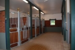 Stall1_224.JPG